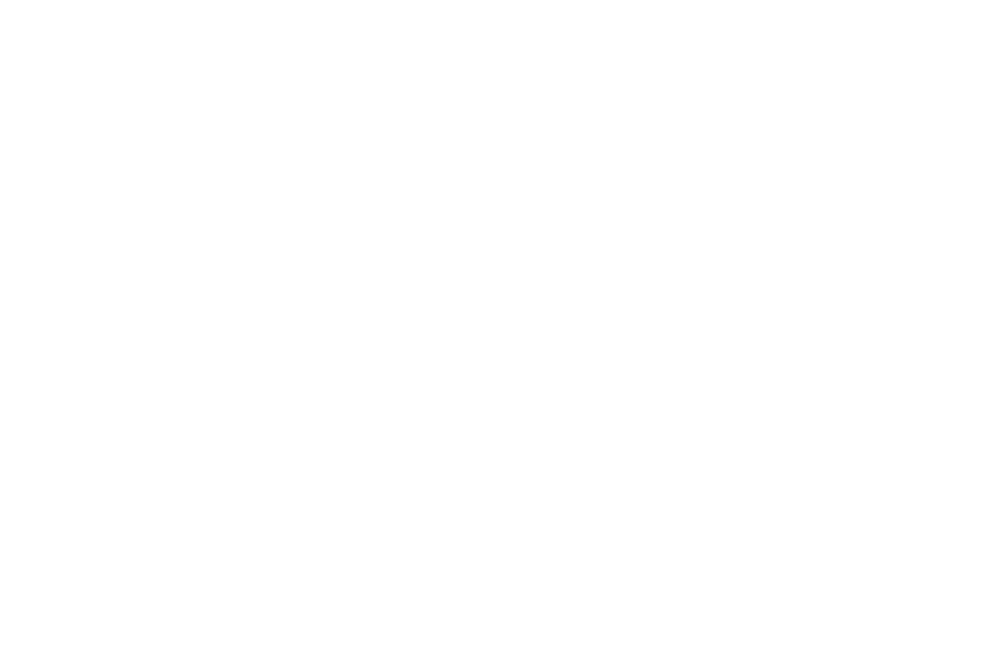OFFICIAL SELECTION - BEST FILM AWARDS - 2017 (1).png
