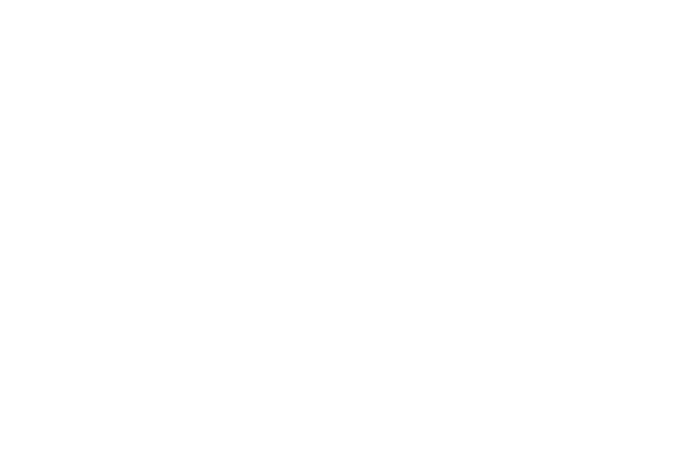 OFFICIAL SELECTION - BUCHAREST FILM AWARDS  - 2017 (1).png