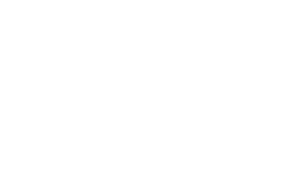 OFFICIAL SELECTION - PHENICIEN INTERNATIONAL FILM FESTIVAL  - 2017.png