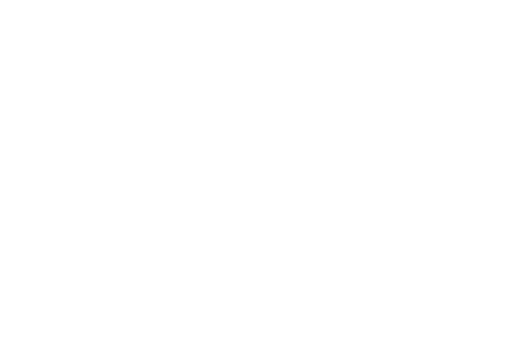 OFFICIAL SELECTION - THE BRIGHTSIDE TAVERN SHORTS FILM FEST - 2017 (1).png