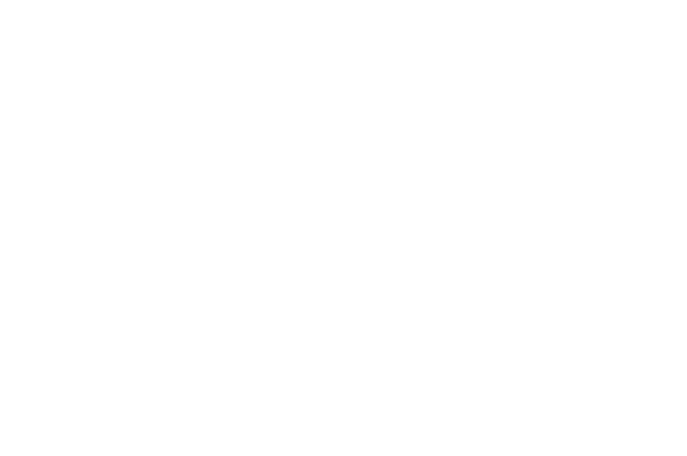 NOMINATED - BEST DIRECTOR - BRIGHTSIDE TAVERN SHORTS FESTIVAL 2017.png