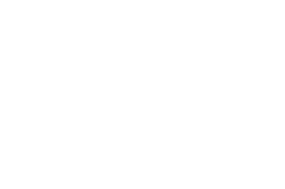 WINNER  - HONORABLE MENTION CAMERA DOR - PHENICIEN INTERNATIONAL FILM FESTIVAL 2017 (1).png