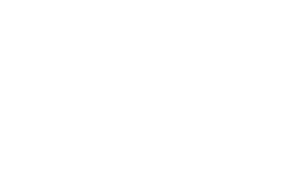 OFFICIAL SELECTION - HANG ONTO YOUR SHORTS  - 2017 (1).png