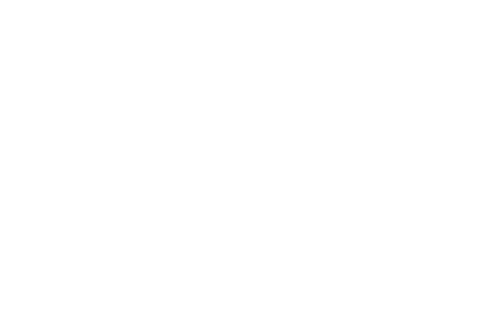 WINNER  - BEST DIRECTOR  - BRIGHTSIDE TAVERN SHORT FILM FESTIVAL 2017.png