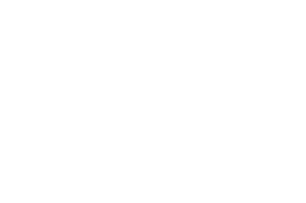 OFFICIAL SELECTION - GARDEN CITY INTERNATIONAL FILM FESTIVAL  - 2017.png