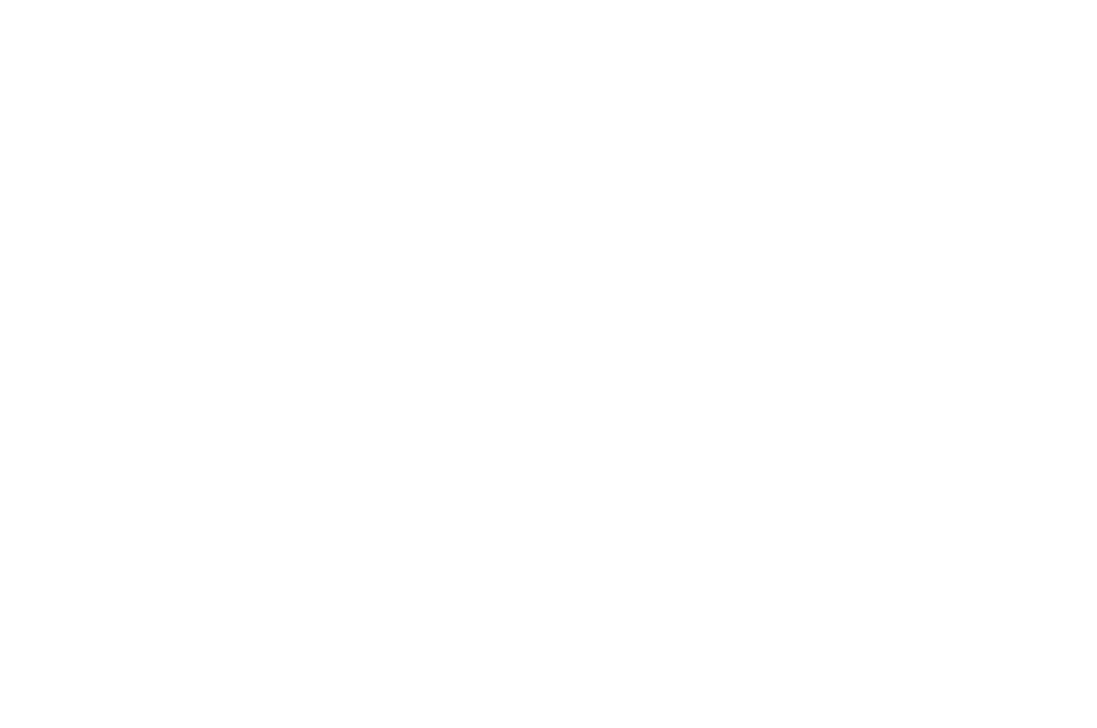 OFFICIAL SELECTION - NEW YORK SUN FEST  - 2017.png