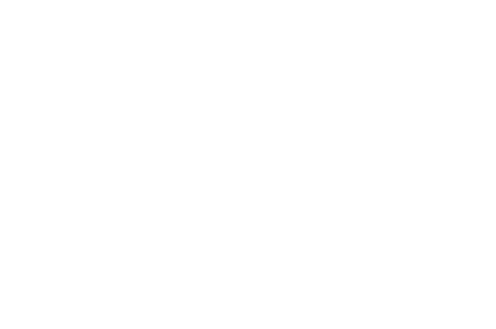 WINNER - BEST FIRST TIME DIRECTOR  - HONOLULU FILM AWARDS 2017.png