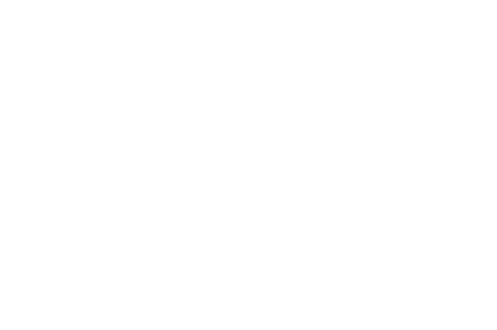 WINNER - BEST DIRECTOR LONG SHORT  - HANG ON TO YOUR SHORTS 2017.png