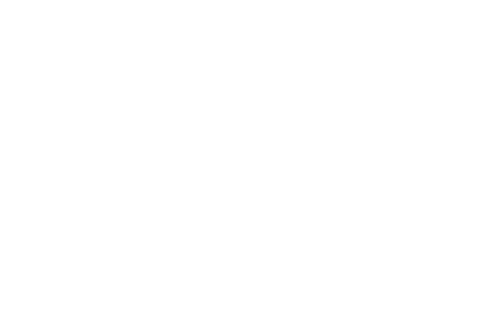 OFFICIAL SELECTION - HOPE FILM AWARDS  - 2017.png