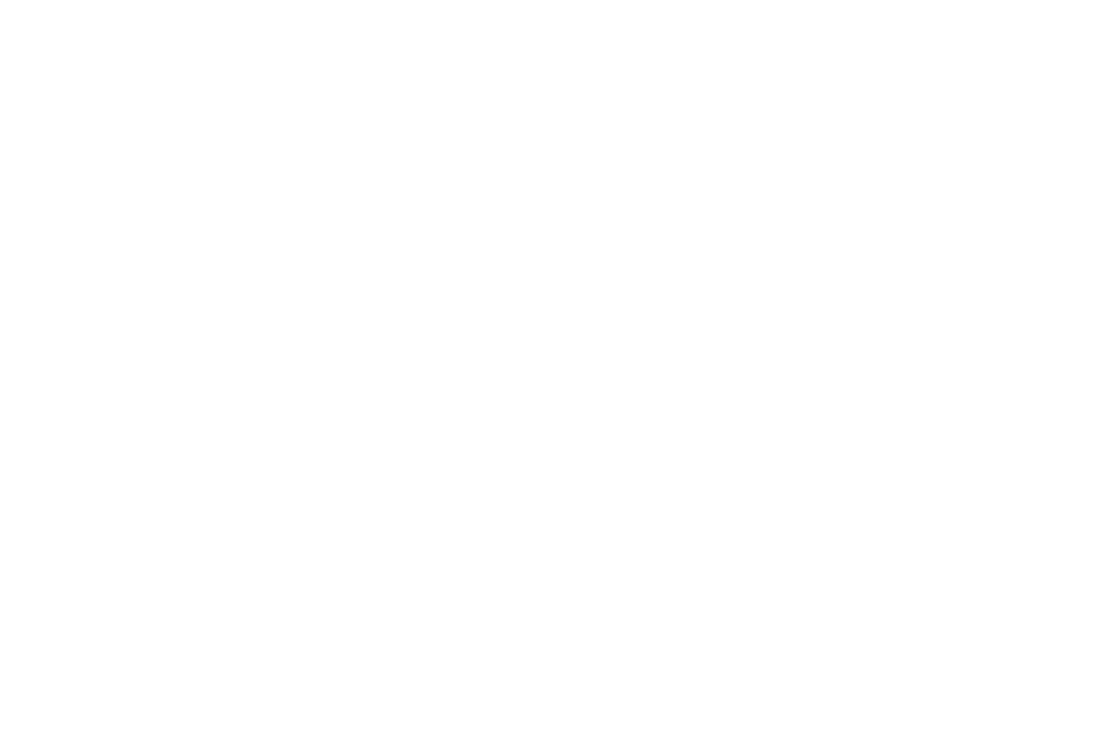 OFFICIAL SELECTION - NORTHEAST FILM FESTIVAL  - 2017.png