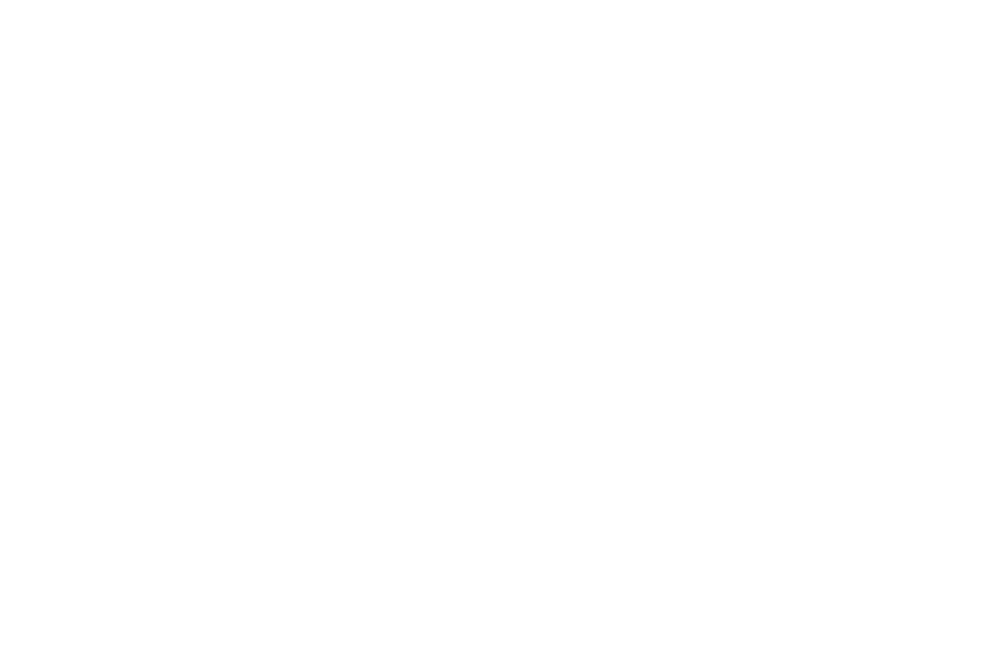 OFFICIAL SELECTION - ENDLESS MOUNTAINS FILM FESTIVAL  - 2017.png