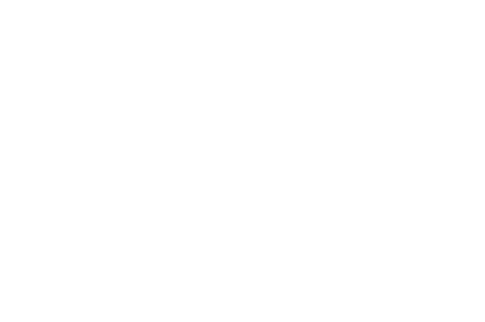 OFFICIAL SELECTION - AMERICAN FILMATIC ARTS AWARDS - 2017 (1).png