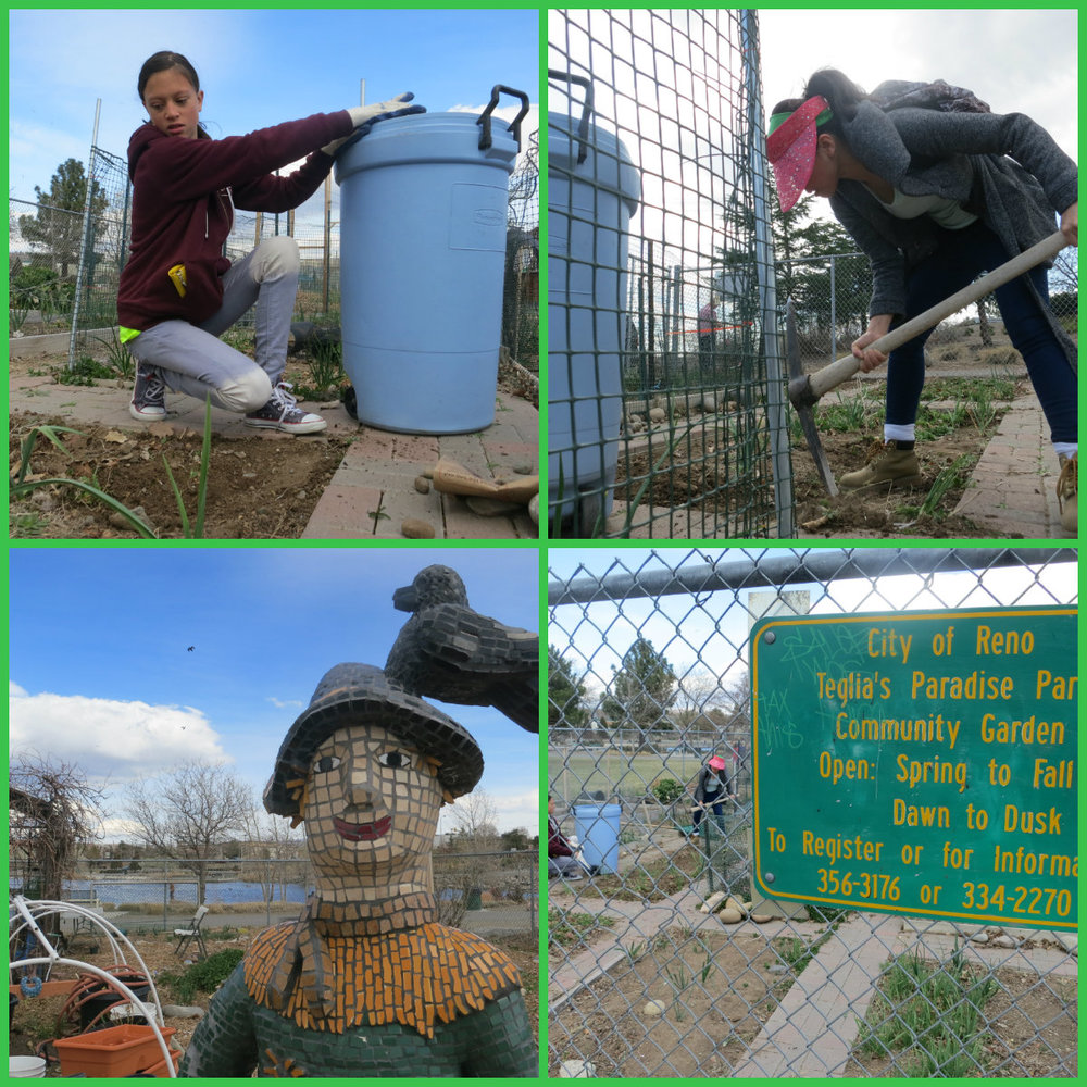 The community garden is open to individuals and non-profits.  Potlucks are held in the summer.