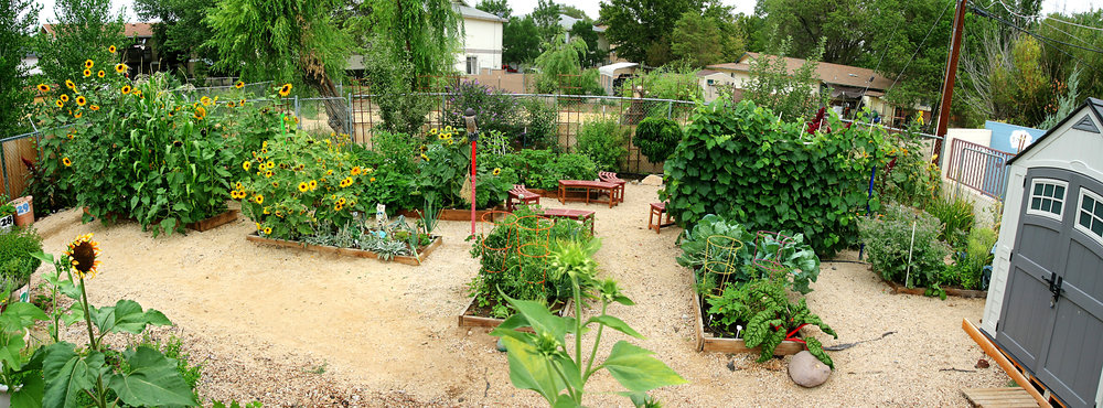 File photo of the garden at the Mariposa Academy, by Bill Kositzky.
