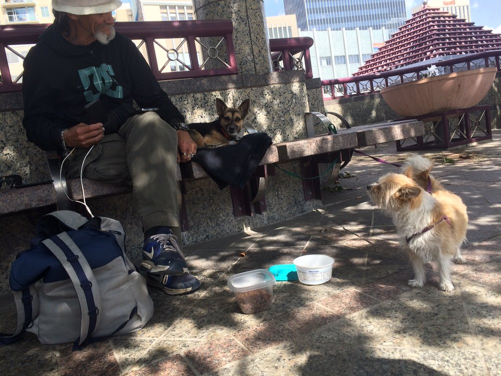 """This is Baby Bear and Gremlin,"" Harry, said of his two dogs.  ""Lots of people come by and donate if they see you sitting with them. They bring you some food or take you to the store and buy some,"" he said of people's generosity. Photo and reporting by Prince Nesta for Our Town Reno."