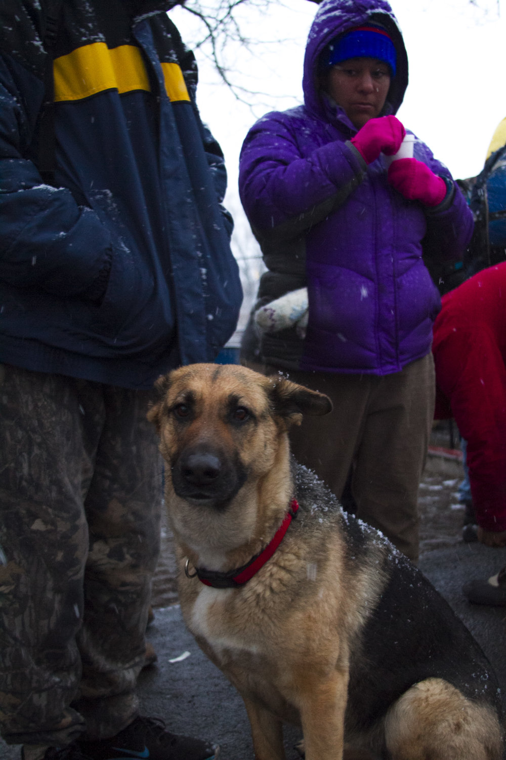 Dog food is also provided. Many houseless with pets avoid shelters because their companions are not accepted there. Photo by Jordan Gearey for Our Town Reno.