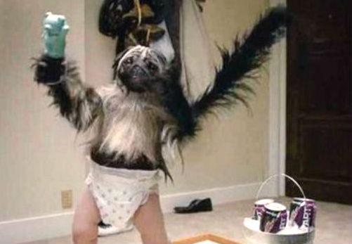 puppy-monkey-babyjpg-d1cde07fec572842.jpg