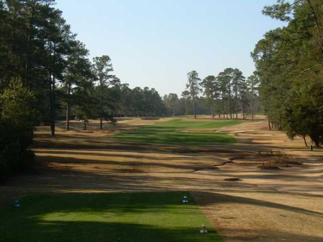 Palmetto Golf Course - Image from Golfadvisor.com