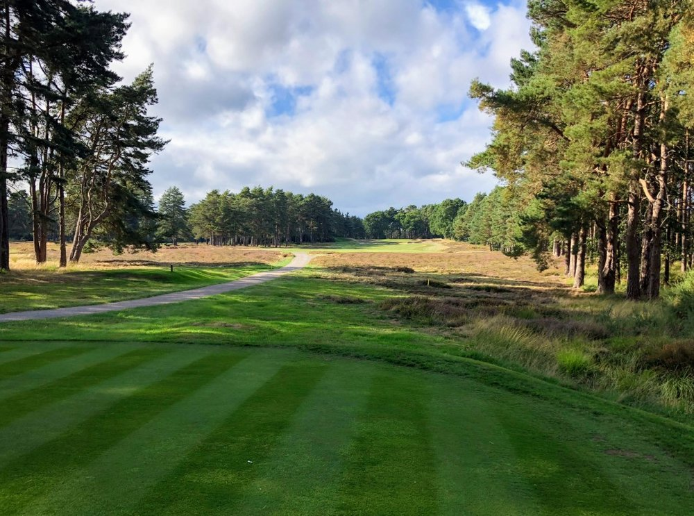 Sunningdale Old Course (22).jpg