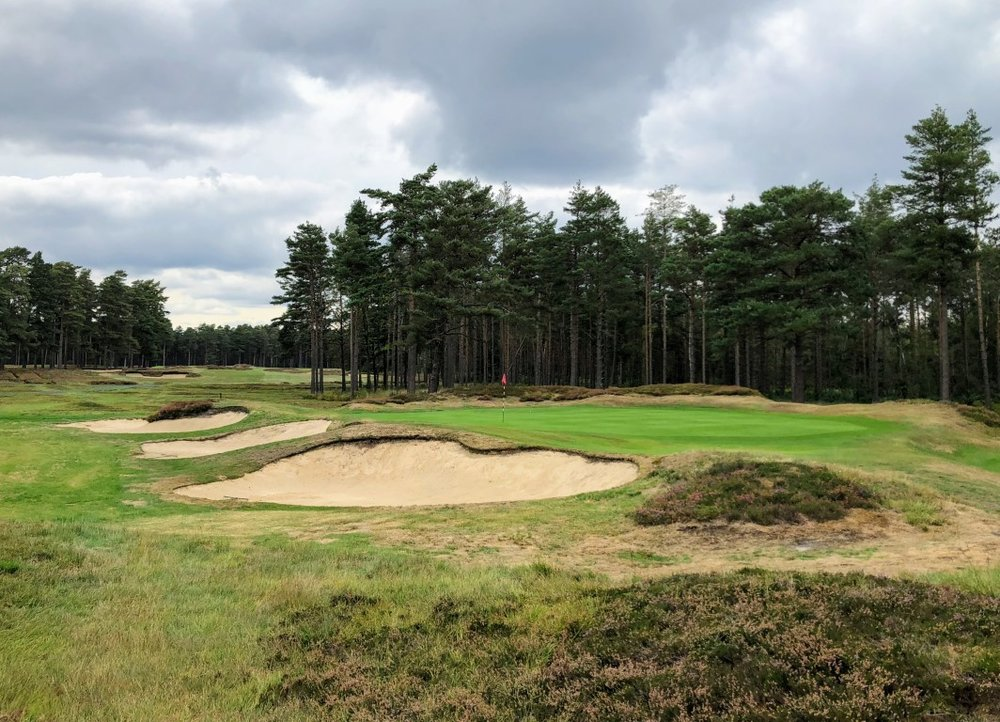 swinley forest golf course