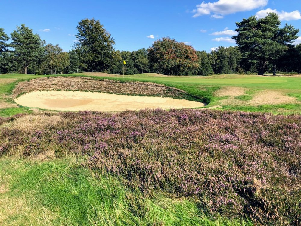 The Old Course at Walton Heath