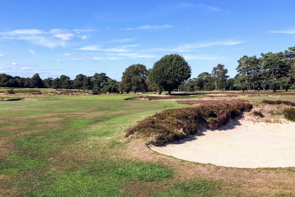 Walton Heath has some great bunkering, and a great back 9