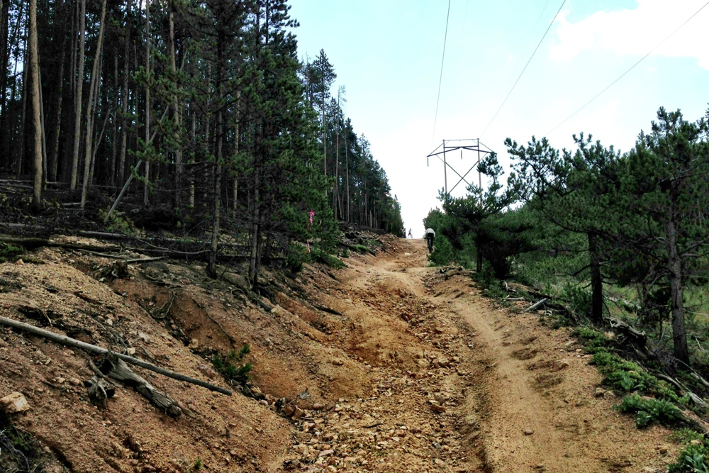 8-10-Powerline-pic.jpg