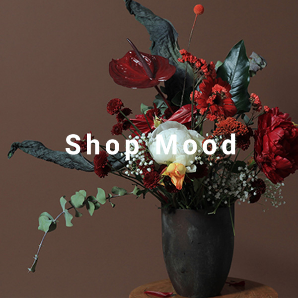 Shop Mood