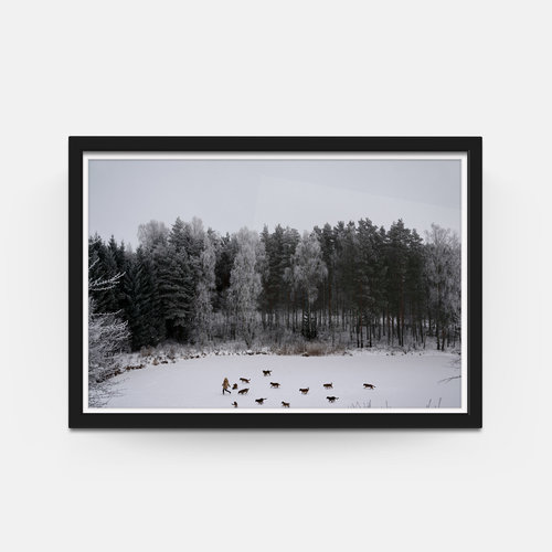 Linas Vaitonis; \'Winter\'s tale\' Framed (26\