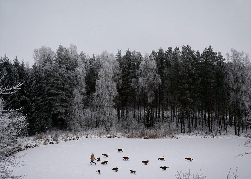 Winter's-tale.jpg
