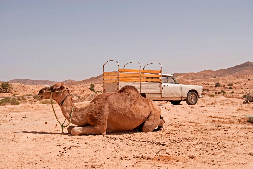 Desert,-Tunisia---Drazen-Grujic-www.kuruza.com-11.jpg
