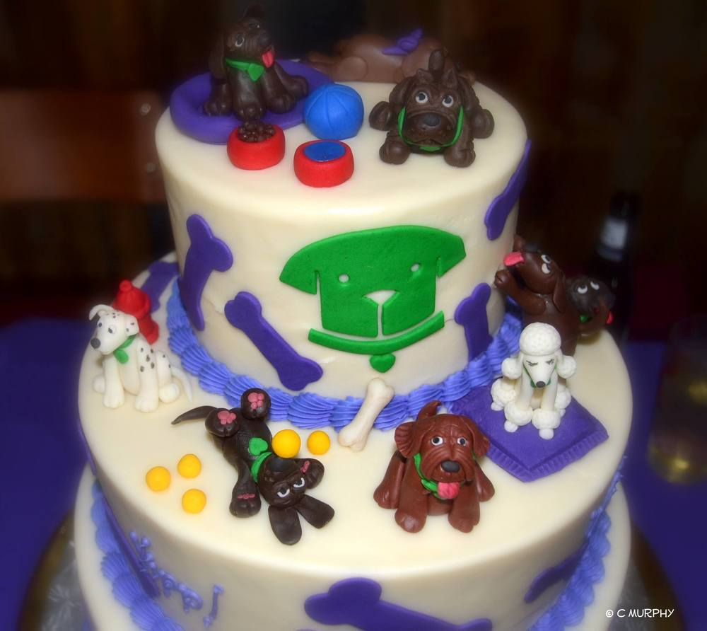 bark cake.jpg