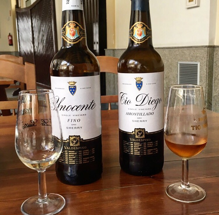 Notice the difference in color between the Fino (left) and the Amontillado (right) from Valdespino, another favorite producer I visited