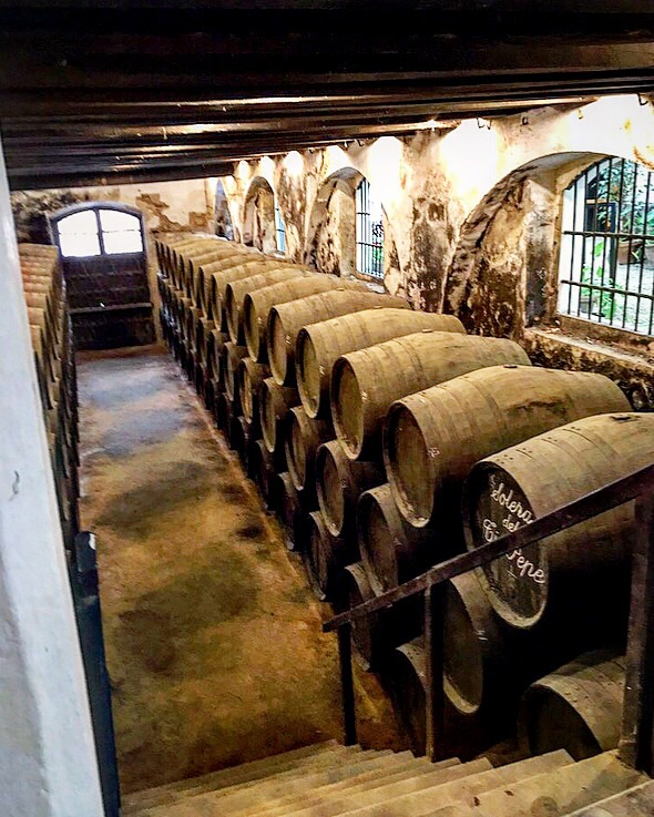 The cellar where the famous Tio Pepe from Gonzalez Byass sherry is aged