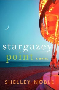 Stargazey Point book cover