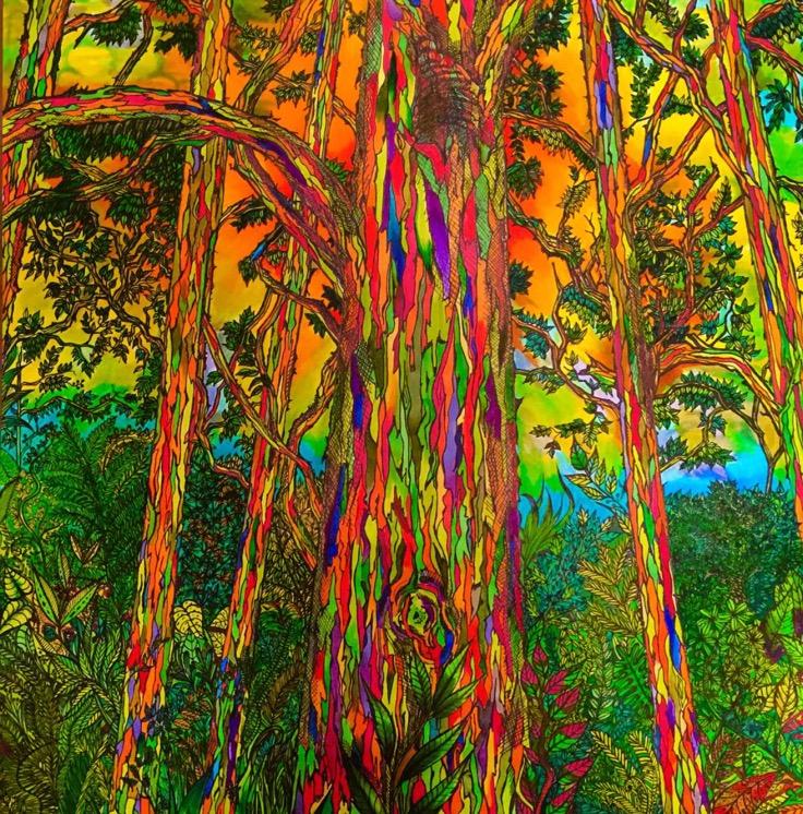 Detailed Art: Lisa Grosfeld /  Eucalyptus Deglupta  (Rainbow Eucalyptus Tree)