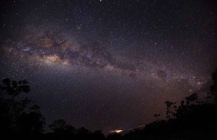 Photography:  Hannah Mattner  / Amazon Rainforest PERU