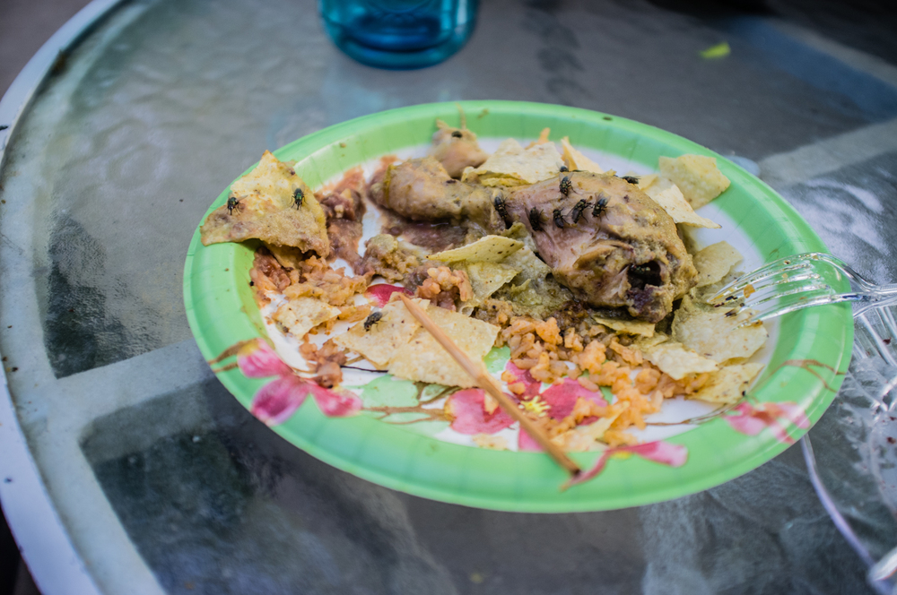 A plate of food is consumed by flies at  convivio .