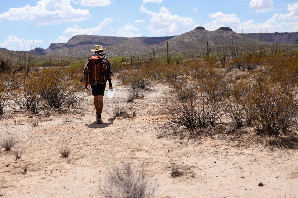 J, an experienced volunteer, leads the final hike of the day in Ajo, AZ, a mile and a half into the desert.