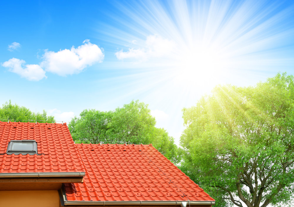 Practical Solutions for Building Owners