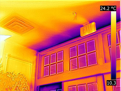 Thermal Imaging and Moisture Surveys