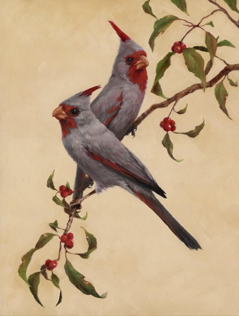 Foley Desert Cardinal