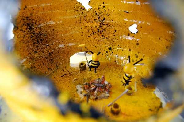 002-Bumblebee_Nightlight_InsideLook_endangeredHoneybees-