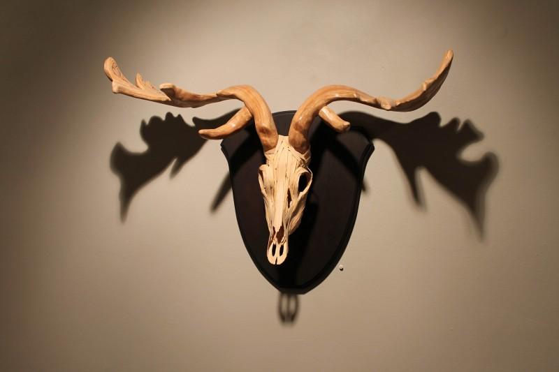 Feral Creatures 51