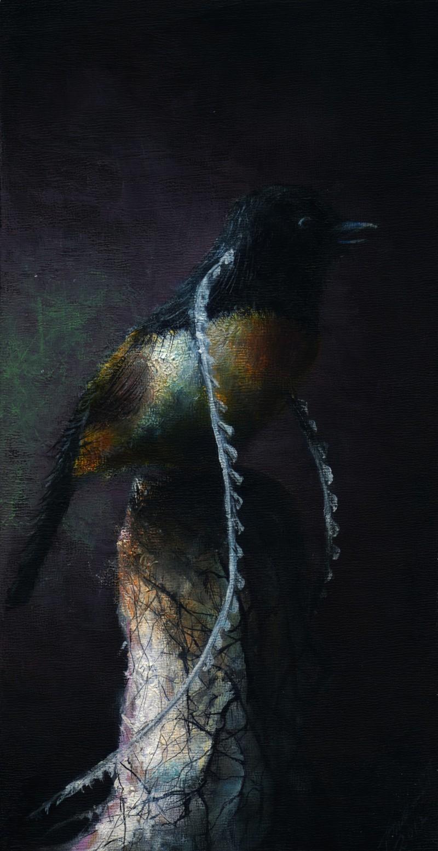 Bird_of_Paradise1