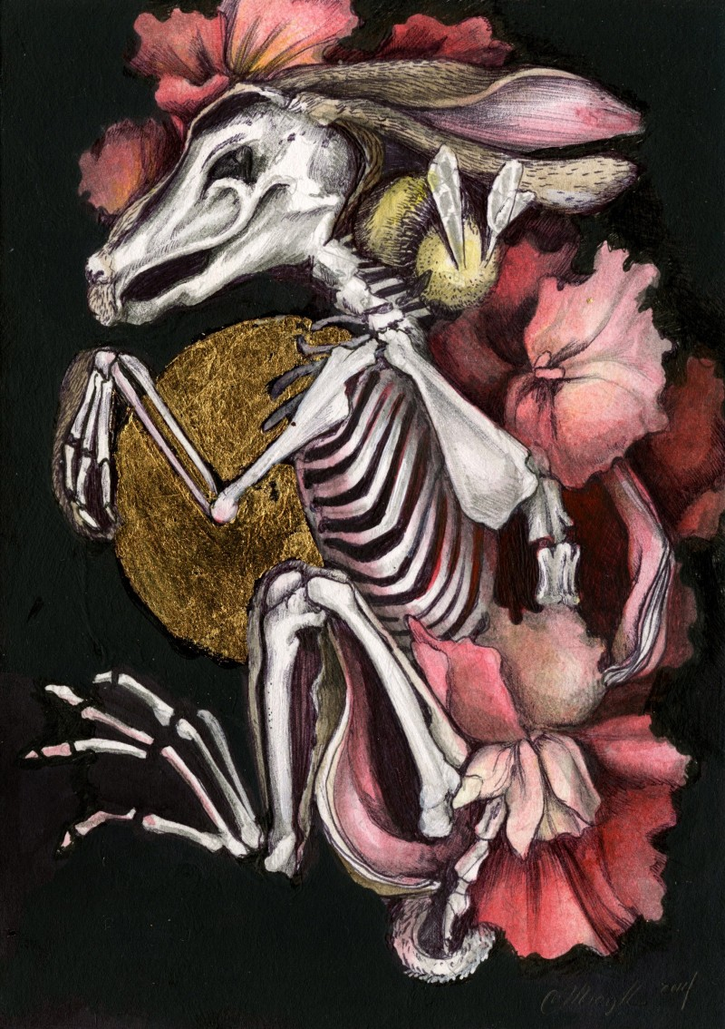Christina Mrozik 'Hare Skeleton'