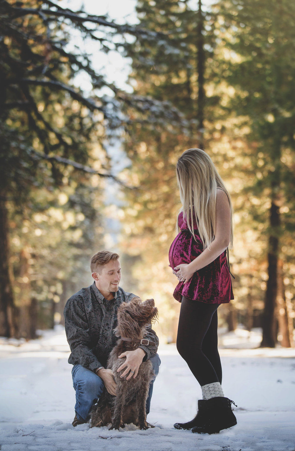 maternity image with dog red bluff photographer