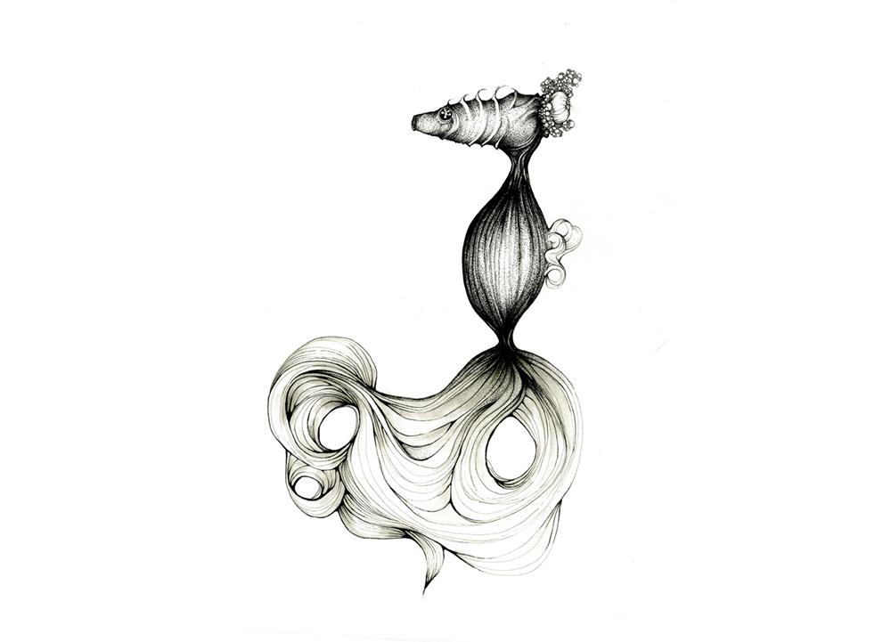 seahorse2.jpg