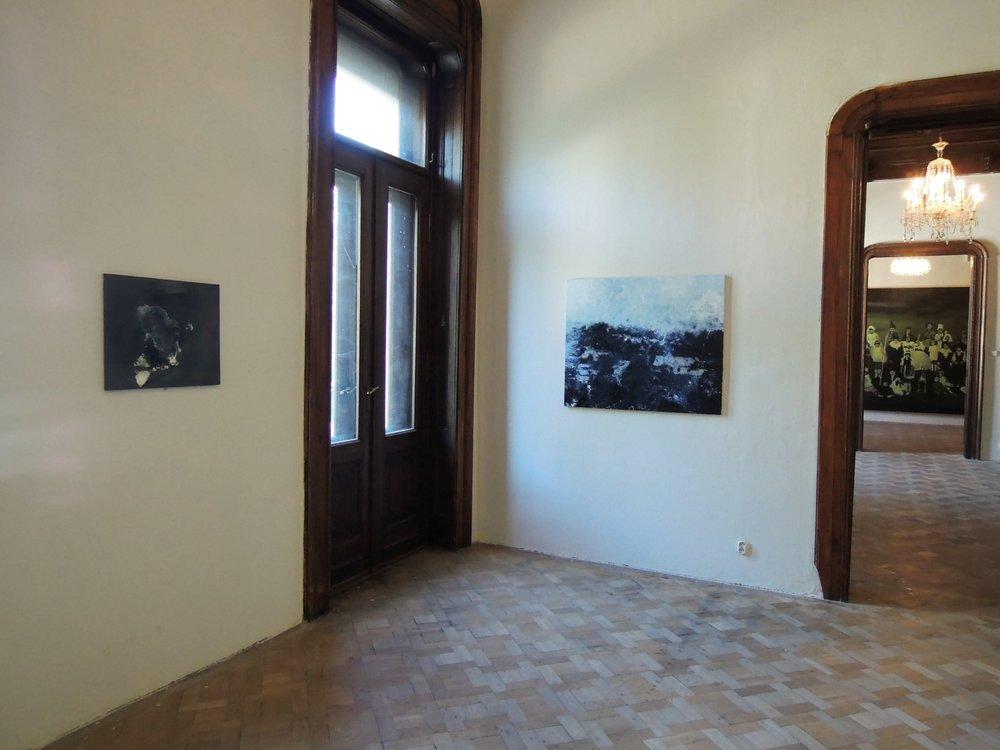 La Belle Peinture 2 , Bratislava (SK), Pisztory Palace.Curators : Eva Hober and Ivan Jançar.Artists in view: Lionel Sabatté, Matej Krén, Claire Tabouret