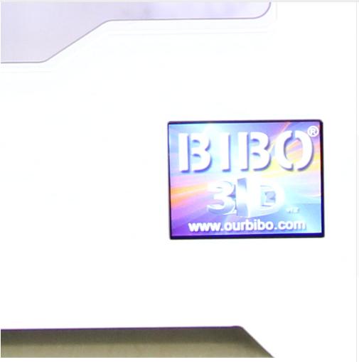 BIBO4.PNG